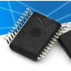 1 PC PGA2505I PGA2505IDBR Digitally-Controlled MICROPHONE PREAMPLIFIER SSOP-24